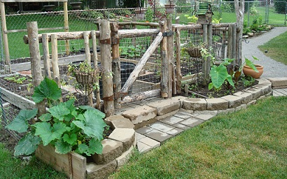 Build a raised bed garden in your backyard