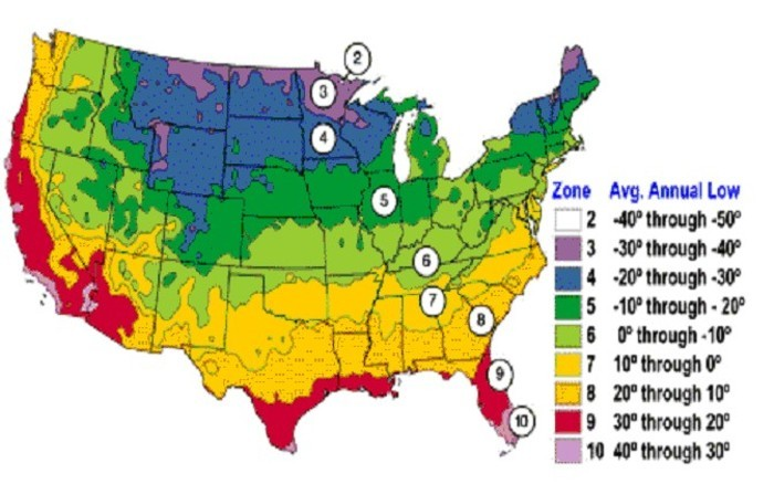 Use This Plant Zone Chart To Know When To Plant Your Garden
